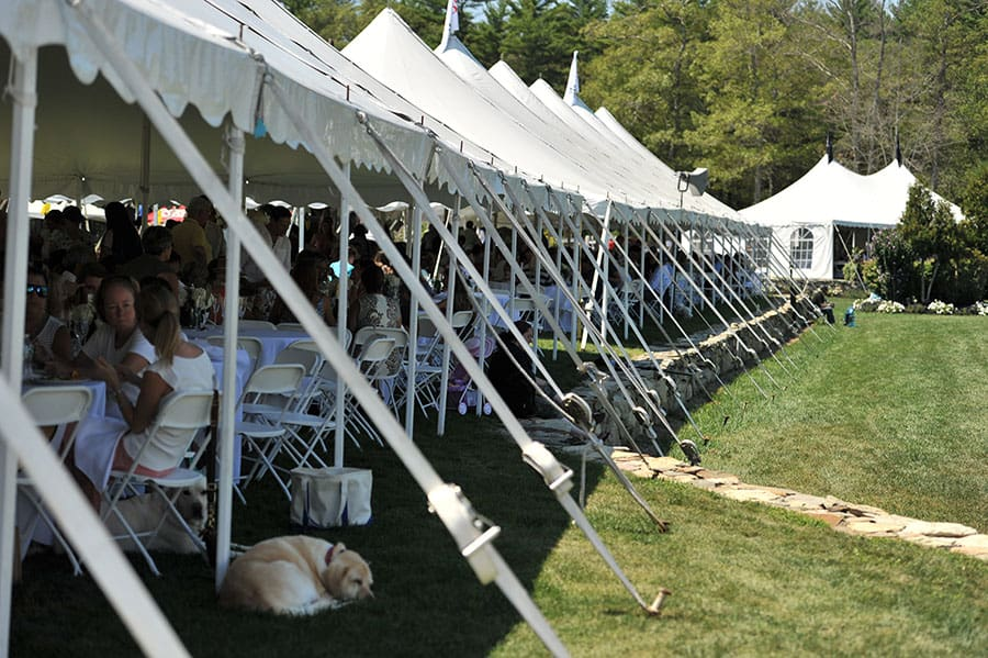 03-vip-tent-silver-oak-jumper-tournament