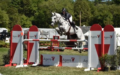 The Silver Oak Young Jumper 2016 Wrap Up